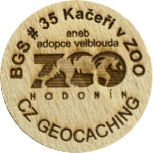 BGS # 35 Kačeři v ZOO