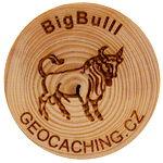 BigBulll