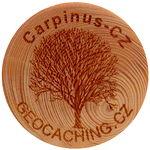 Carpinus-CZ