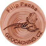 Filip Pecha