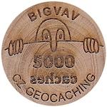 BIGVAV