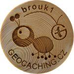 brouk1