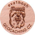 eva1hoch