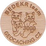 BEDEKR team