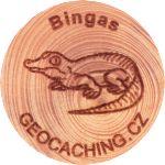 Bingas