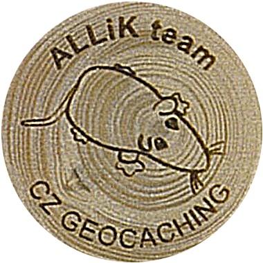 ALLiK team