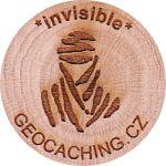 *invisible*