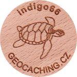 indigo66