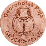 Georobotek Paja