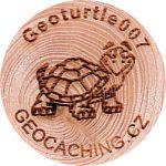 Geoturtle007