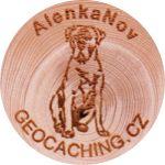 AlenkaNov