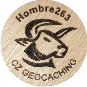 Hombre263