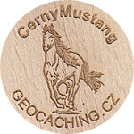 CernyMustang