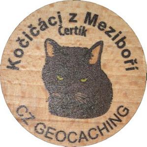 Kočičáci z Meziboří