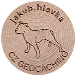 jakub.hlavka