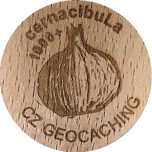 cernacibuLa