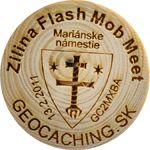 Zilina Flash Mob Meet