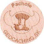 Pachole