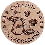 Dubachik