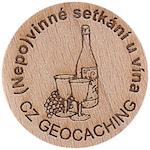 (Nepo)vinné setkání u vína