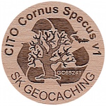 CITO Cornus Specus