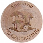 Egonovic
