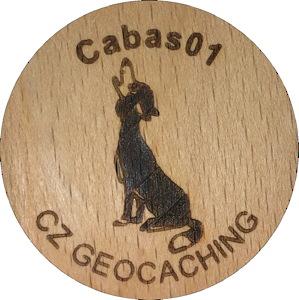 Cabas01